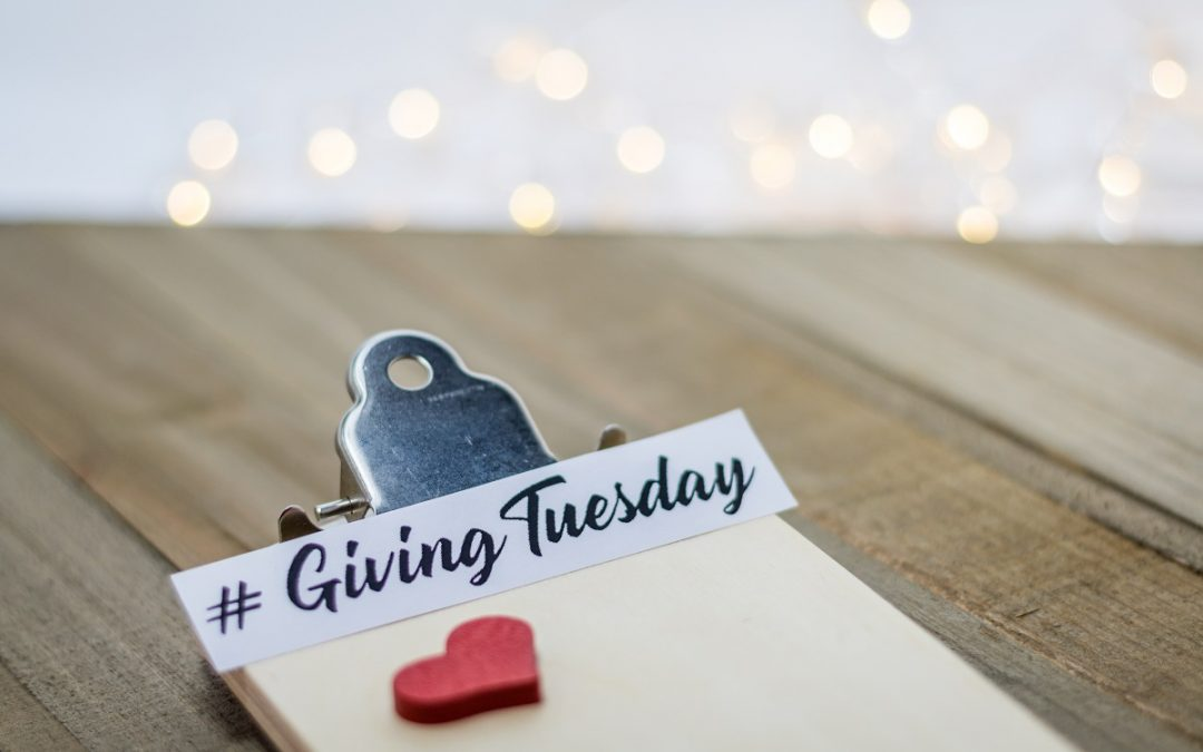 Rejoice in the Spirit of Giving Tuesday With CACHSC!